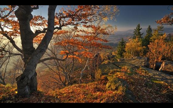 Autumn world 10