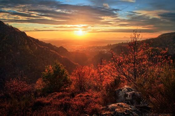 Everlasting Autumn